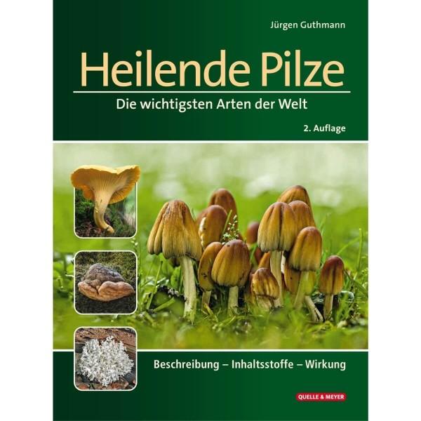 Heilende Pilze - die wichtigsten Arten der Welt im Porträt